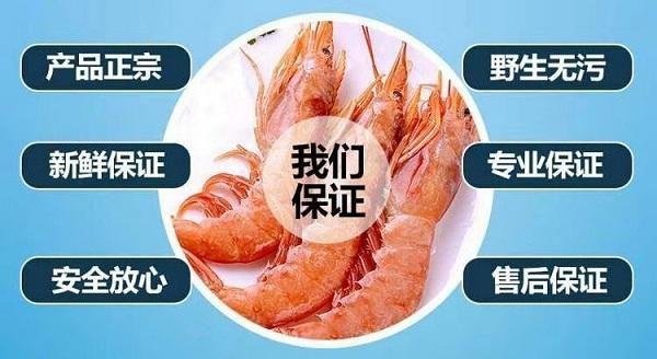 阿根廷红虾3.jpg