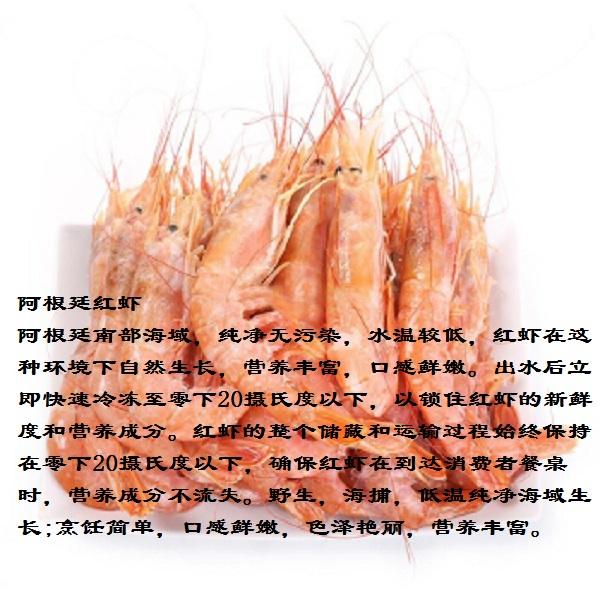 阿根廷红虾2.jpg