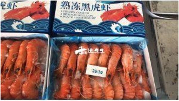 黑虎虾6.jpg